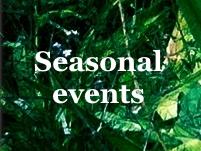 diary_seasons