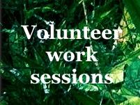 diary_volunteer